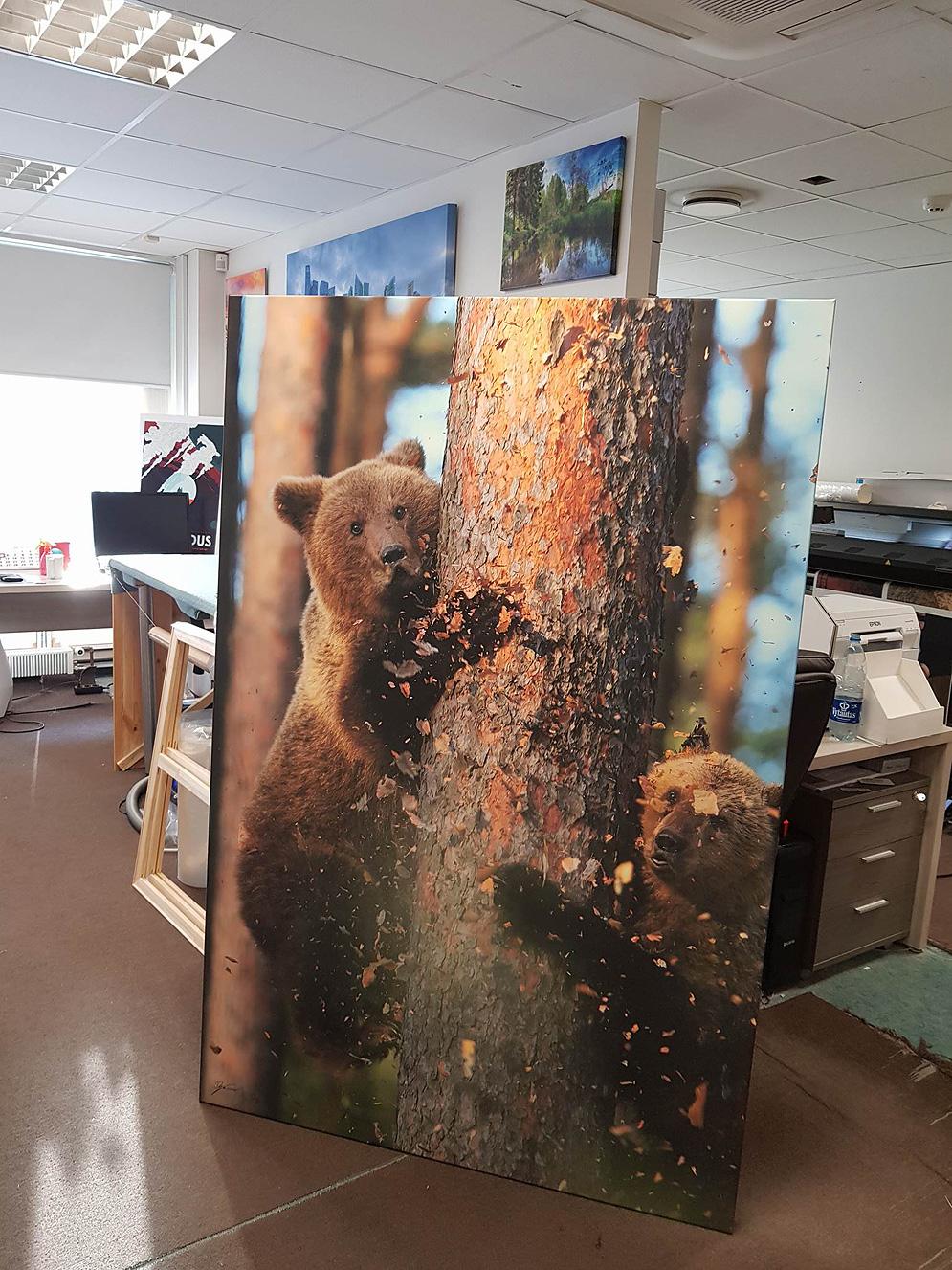 180x120cm Pro fineart lõuend puidust alusraamil.
